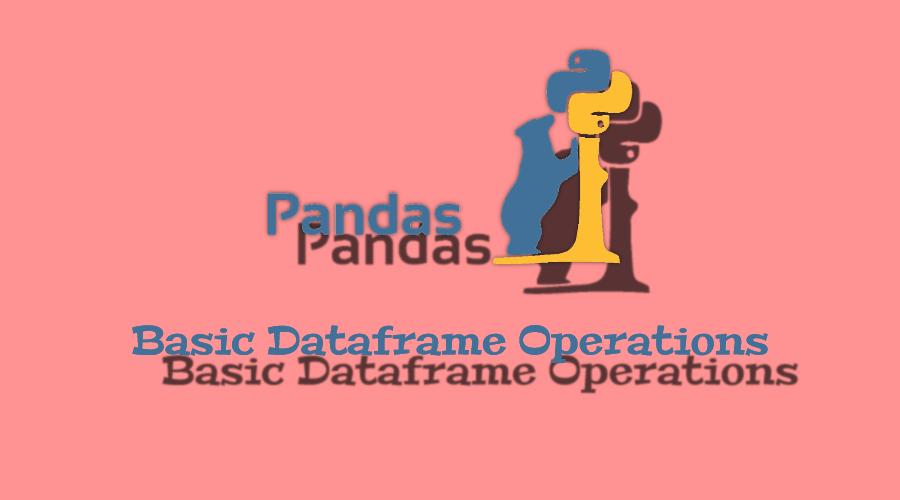 Python Pandas ile Temel İşlemler