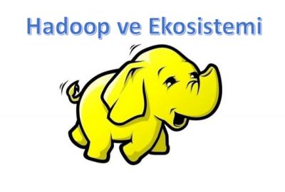 Hadoop ve Ekosistemi-1 (Temel Bileşenler: HDFS, MapReduce, YARN ve Spark)