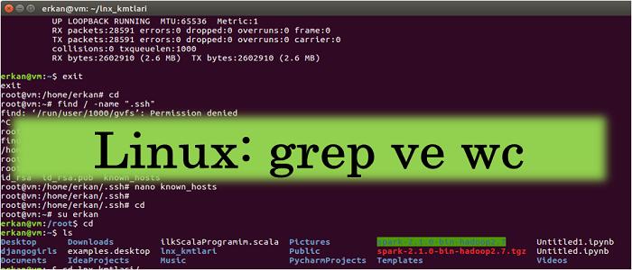 Sık Kullanılan Linux Komutları: grep ve wc