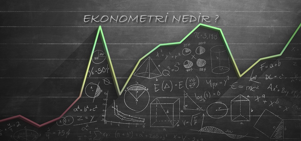 Ekonometri Nedir?