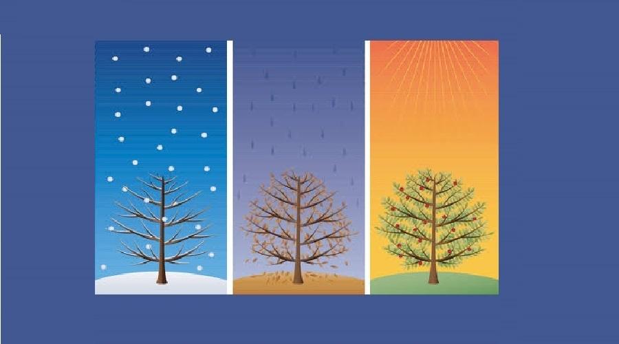 Gradient Boosted Regresyon Ağaçları