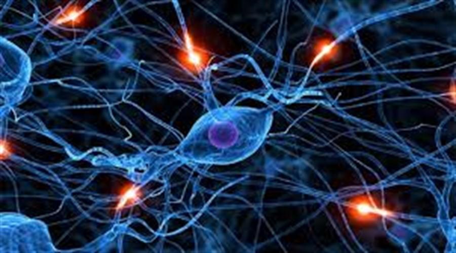 Yapay Sinir Ağı(Artificial Neural Network) Nedir?